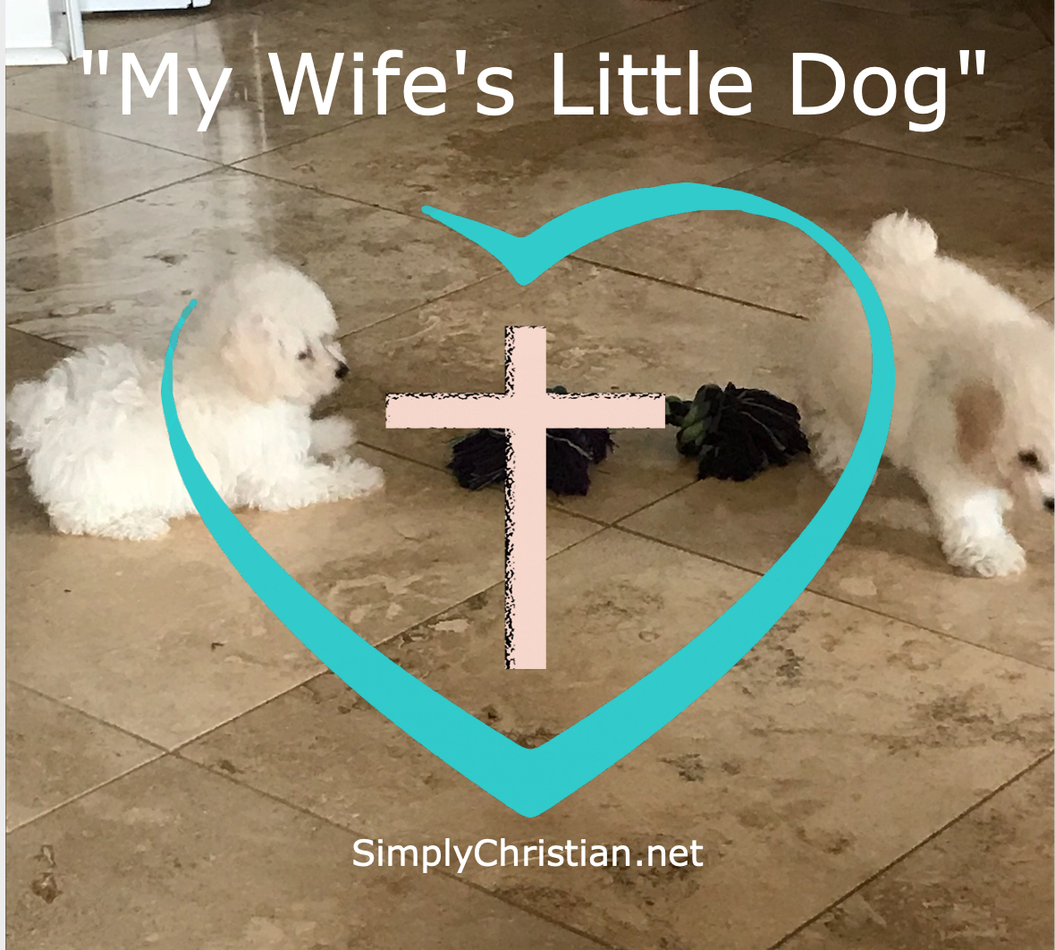 SimplyChristian Open To Jesus My Wife's little dog